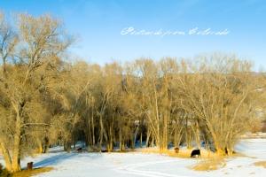 PostcardsfromColorado-130304