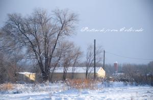 PostcardsfromColorado-130310