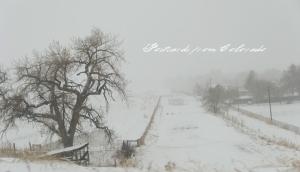 PostcardsfromColorado-130312
