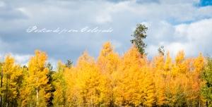 PostcardsfromColorado-131010