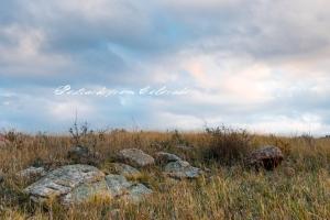 PostcardsfromColorado-131017