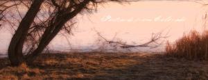 PostcardsfromColorado-131224