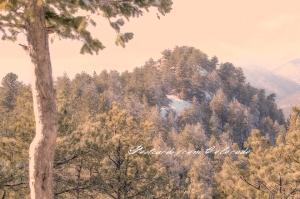 PostcardsfromColorado-140225