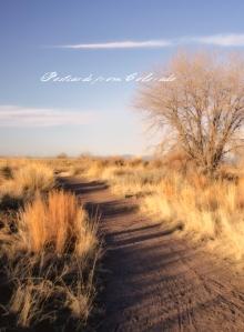 PostcardsfromColorado-140401