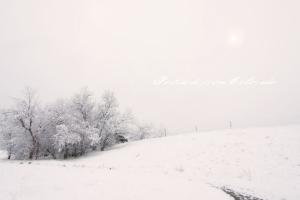 PostcardsfromColorado-140403