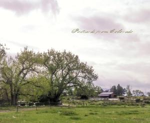PostcardsfromColorado-140512