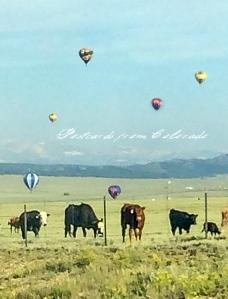 PostcardsfromColorado-140805