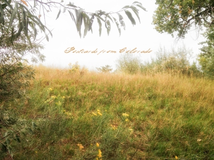 PostcardsfromColorado-140929