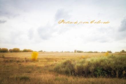 PostcardsfromColorado-141010