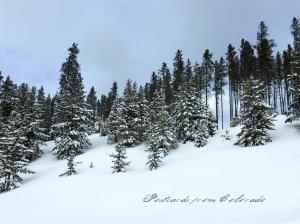 PostcardsfromColorado-150104