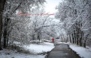 PostcardsfromColorado-150221