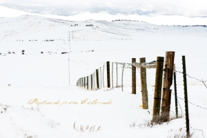 PostcardsfromColorado-150302