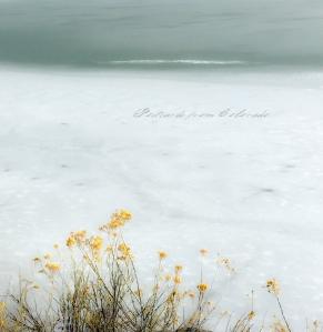 PostcardsfromColorado-150308
