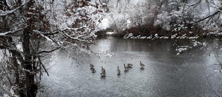 PostcardsfromColorado-150325